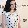 Dita Von Teese at the 2013 NAHAs